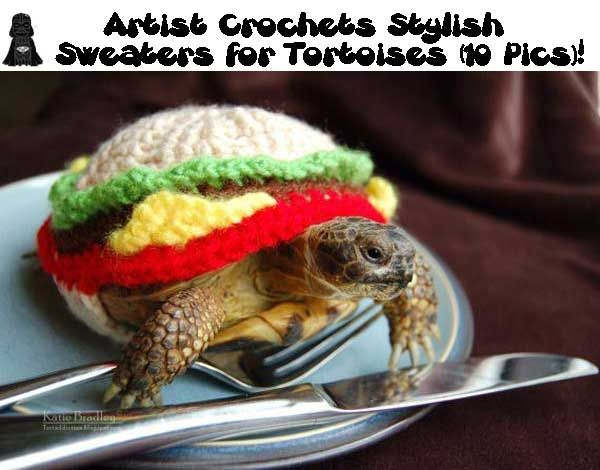 Artist Crochets Stylish Sweaters for Tortoises. Because the tortoise clothing market is popping. Keep crocheting useless products, people.
