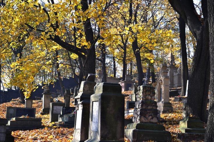 W swoim programie wyborczym Olgierd Dąbrowski porusza tematy, którymi od dawna nikt się nie zajmował. Wśród tych tematów znajduje się sprawa uporządkowania cmentarza Polska Górka oraz powstanie nowego cmentarza komunalnego.http://visitolsztyn.pl/uporzadkowanie-cmentarza-polska-gorka-oraz-powstanie-nowego-cmentarza-komunalnego. -%E2%80%93-program-wyborczy-olgierda-dabrowskiego/