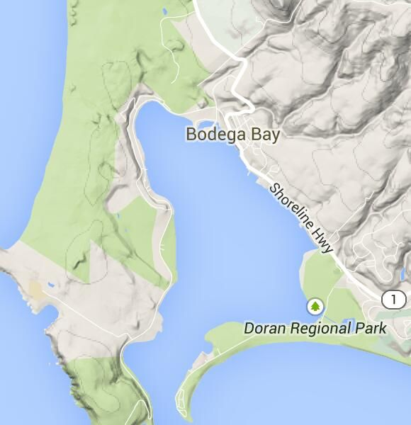 5 Fun Things To Do in Bodega Bay | Sonoma County (Official Site) 40 min away