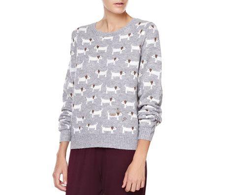 Dog pattern jersey - OYSHO
