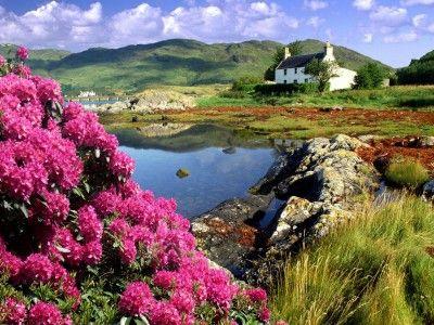 Scotland beautiful landscape, Scotland  wallpaper, Scotland HD photoScotland, Country Scene, Lakes House, Country Cottages, Ireland, Scottish Highlands, Places, Desktop Wallpapers, Nature Beautiful