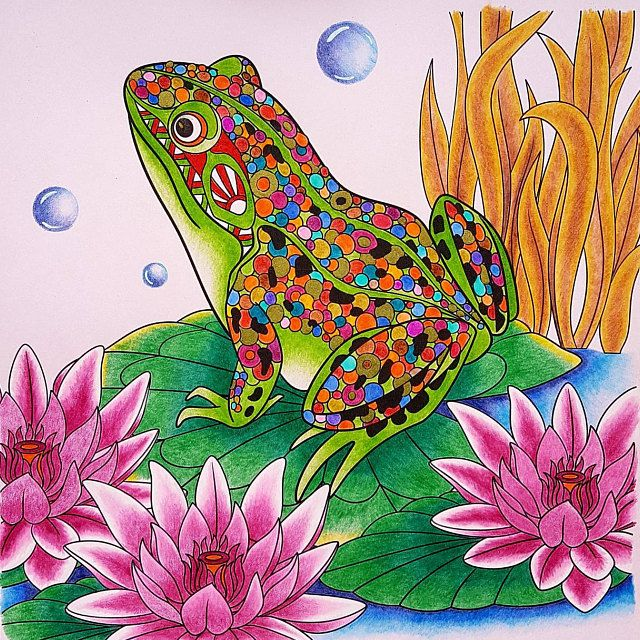 Coloring pages for adults. Frog. Toad. Adult coloring