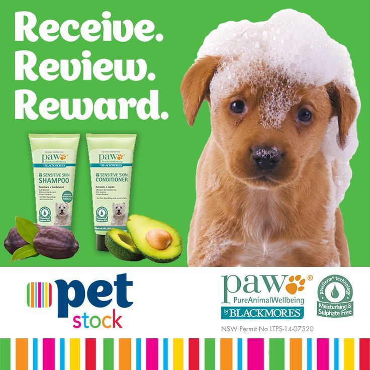 Does your Buddy have sensitive skin? Read what our PETstock Reviewers and their Buddies thought of the PAW Sensitive Skin range! Stay tuned for more great Receive.Review.Reward products.