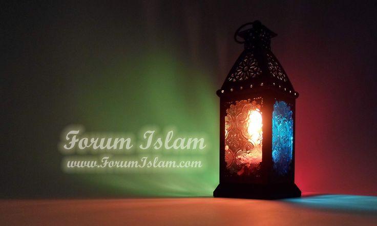 Pr�sentation de Forum Islam : Solidarit� entre Musulmans . Forum Islam - L'Islam du Coran et du Proph�te Mouhammad
