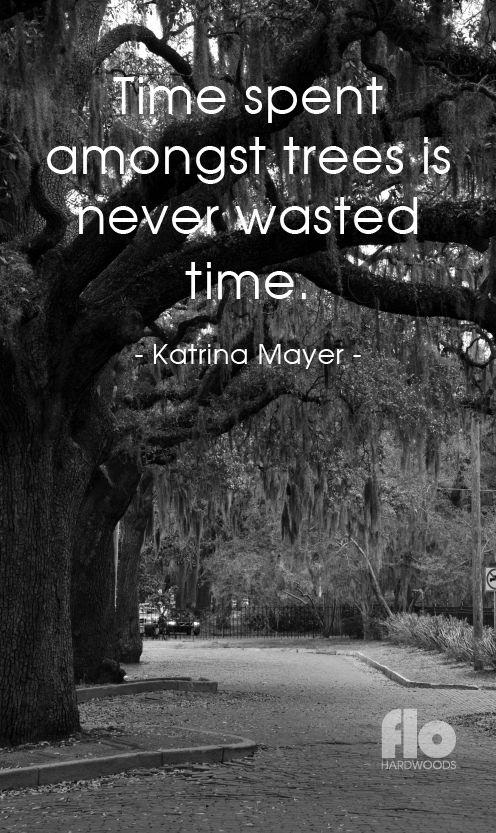 Time spent amongst trees is never wasted time. ~Katrina Mayer  #FLOhardwoods