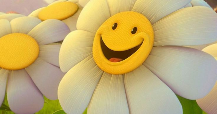 Smiley 100% Free Wallpaper HD | Flowers HD Wallpapers. Download stunning Huge Collections 100% Full Free HD Wallpapers for your Mobile, Tablet and Desktop !