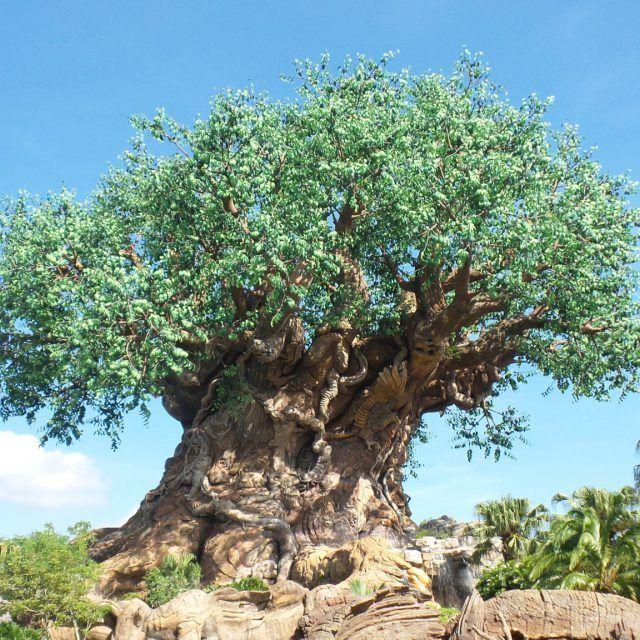 Tree of Life at Disney's Animal Kingdom at Walt Disney World in Orlando, Florida, USA