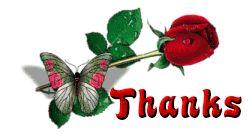Köszönet rózsával