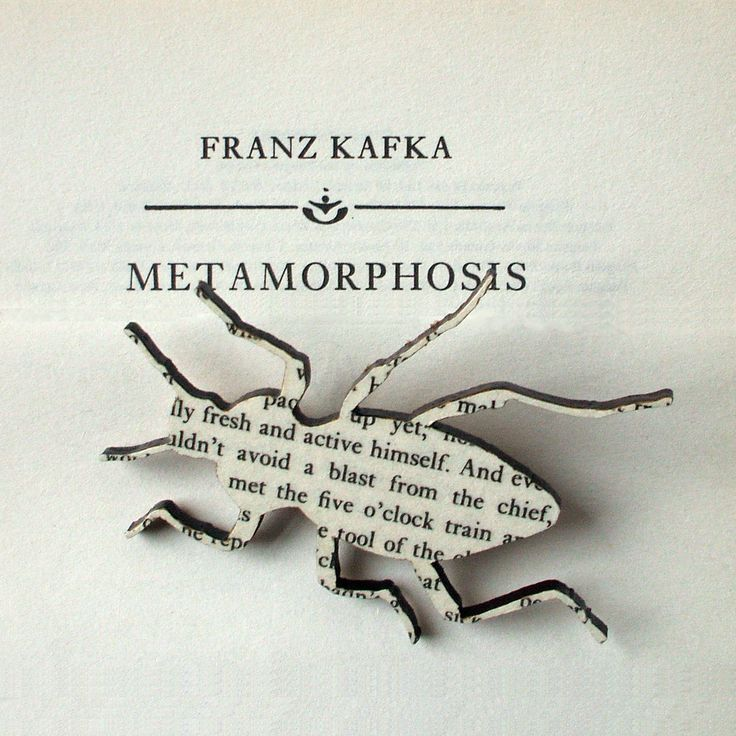 best metamorphosis book ideas cycle photo the book brooches by house of is every literature lover s dream