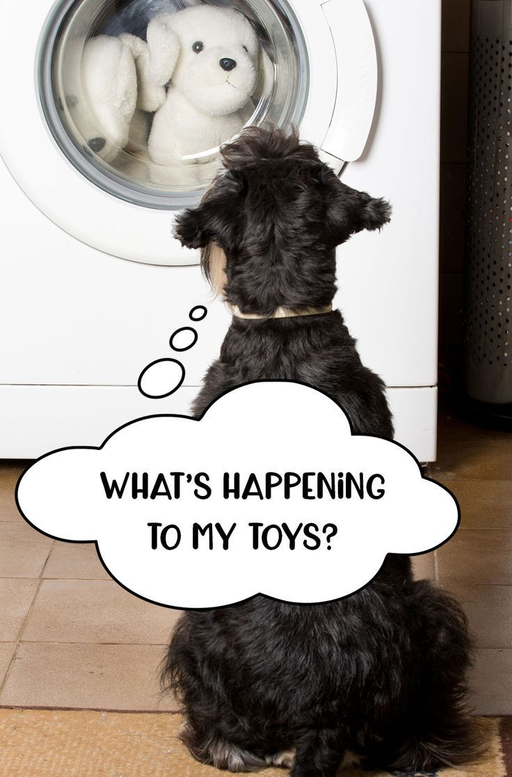 17 Free Dog Toy Sewing Patterns Your Pooch Will Love Dog Toys