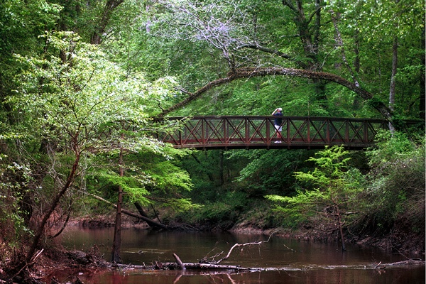 Big Thicket National Preserve - Beaumont, Texas.