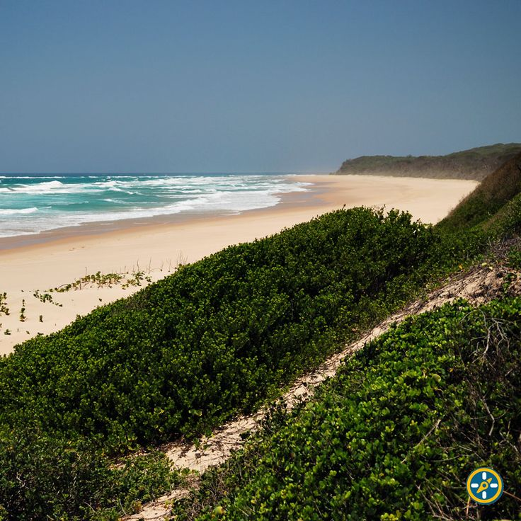 Empty beaches in #Mozambique here we come!!