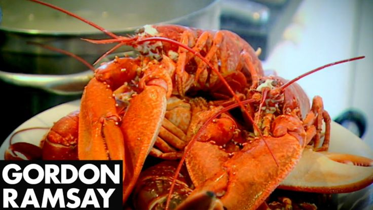 News Videos & more -  the best Cooking Videos - Cooking Lobster with Jeremy Clarkson - Gordon Ramsay #best  #Cooking #Videos #youtube #Music #Videos #News Check more at http://rockstarseo.ca/the-best-cooking-videos-cooking-lobster-with-jeremy-clarkson-gordon-ramsay-best-cooking-videos-youtube/