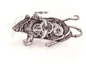 rat by Squidoodle