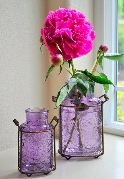 148 best apothecary bottles and jars images on pinterest for Flowers in glass bottles