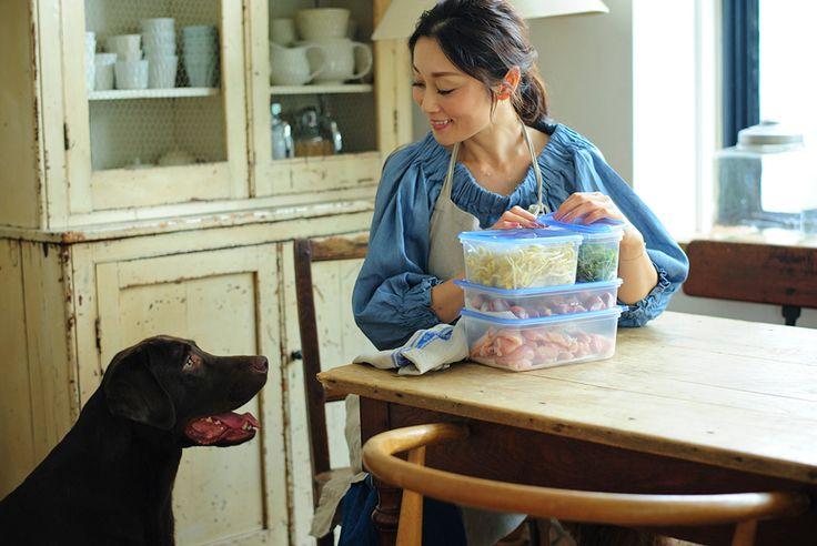 愛犬との暮らしをスマートにする雅姫さん流ジップロックの使い方。サランラップ、ジップロック、クックパー、ズビズバなど家庭日用品の開発・販売を行う旭化成ホームプロダクツ