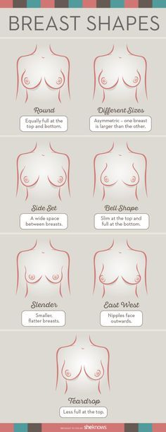 Seven most common breast shapes that should dictate what type of bra they should be shopping for. #Bras