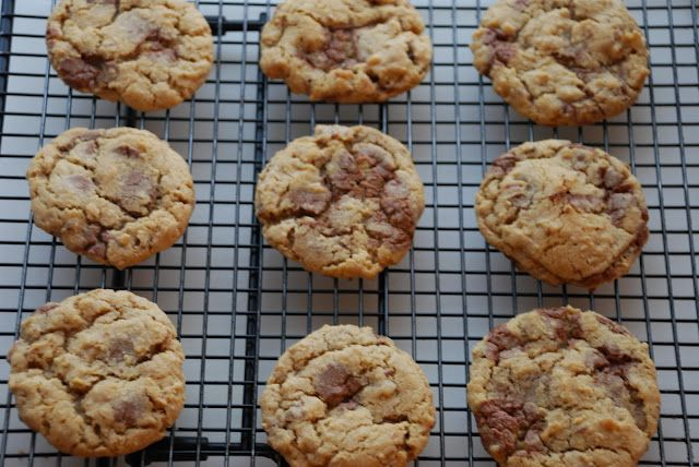 Food Processor cookie recipe - Oatmeal + Chocolate chips = YUMMY
