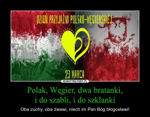 Polak, Węgier, dwa bratanki,i do szabli, i do szklanki – Oba zuchy, oba żwawi, niech im Pan Bóg błogosławi!
