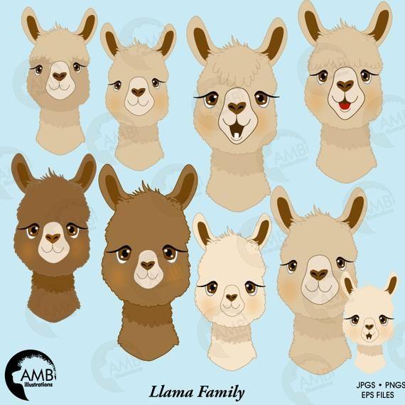 12+ Llama face free clipart info