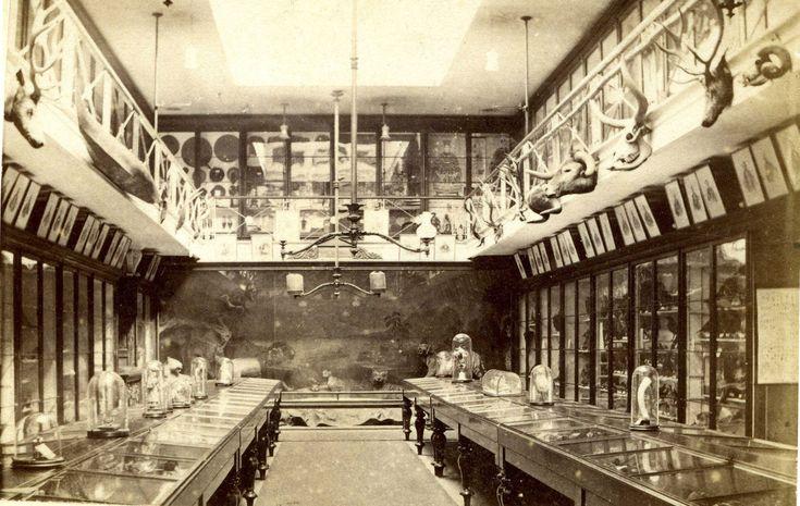http://upload.wikimedia.org/wikipedia/commons/3/38/Ipswich_Museum_Interior_c_1875.jpg