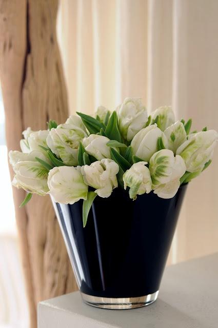 White FlowersWhite Gardens, White Flowers, Super Parrots, Favorite Flower Tre, ღღ Whitetulip, Flower Arrangements, Flower Power, White Stuff,  Flowerpot