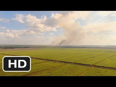 The Harvest (2011) Official HD Trailer - YouTube