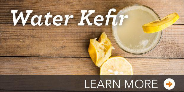 Warer Kefir Expert Advice   Cultures for Health