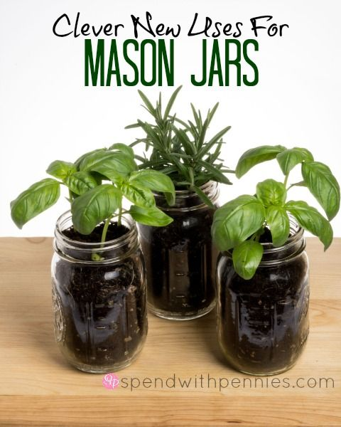 Clever New Uses for Mason Jars Love it? Pin it to SAVE it! Follow Spend With Pennies on Pinterest for more great tips, ideas and recipes! Leave your own great tips in the comments below! If you regularly buy homemade jellies or preserves, or if you...
