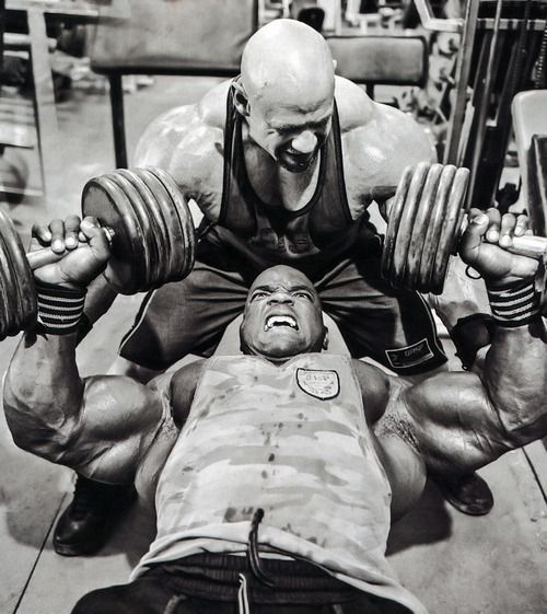 Gym Muscle Bodybuilding Black Mesh Fitness Power Lifting: 184 Best Images About Bodybuilding On Pinterest