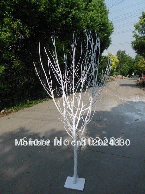 1m tall Branch tree tree