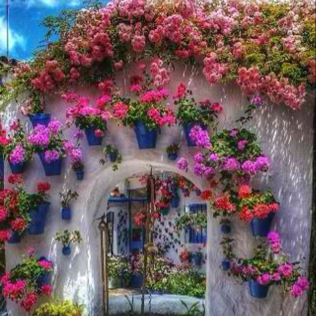 Mexican Rooftop Property Image 15 Gardens On Rooftop 2: Best 25+ Mexican Garden Ideas On Pinterest
