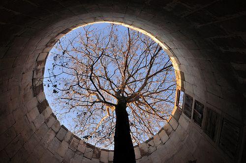 """I malgrat tot, l'esperança. """"Worm's Eye View."""" Tresors al blog de Flickr."""