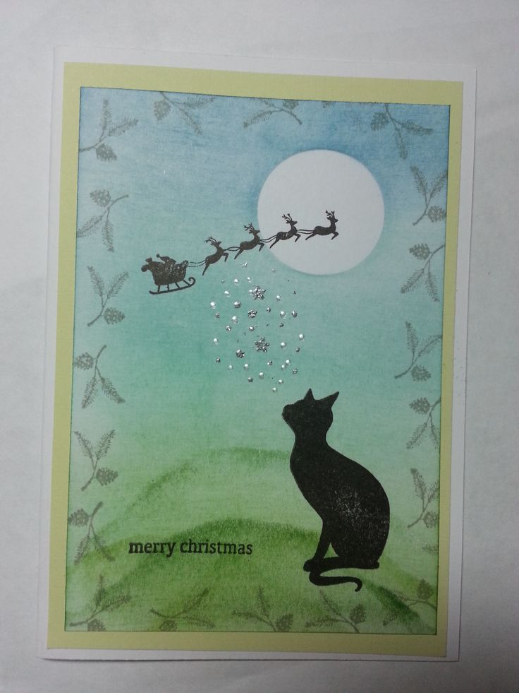 Cat Christmas card using a variety of stamps including the gorgeous lavinia cat. Check out my blog amethystarcrafting.blogspot.com or my facebook page https://www.facebook.com/#!/amethystarcrafting for more ideas