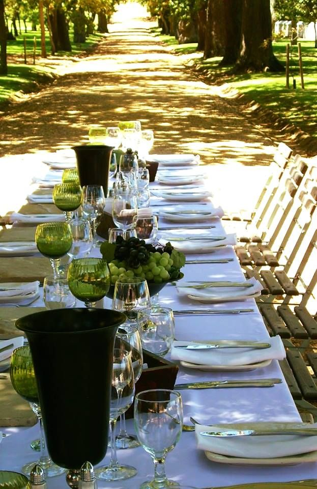 Gorgeous in green for an elegant alfresco affair! #eventdesign #eventdecor #eventmanagement #tabledecor #greendecor #eventprofs #capetown #westerncape