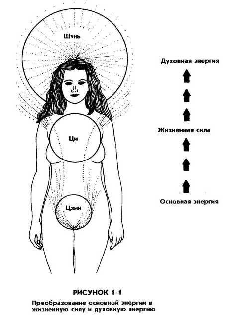 1.ДАОССКОЕ ПОНИМАНИЕ ЭНЕРГИИ ЦИ ЖЕНЩИНЫ / Совершенствование женской сексуальной энергии