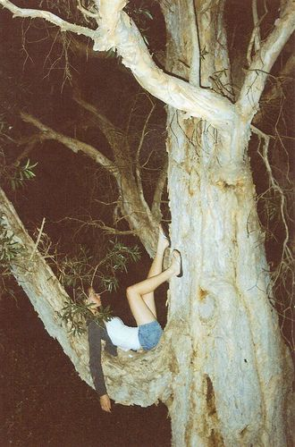 Always climbed the trees around our house..... still can't believe our parents would allow it!! Oh my goodness, we used to climb WAAAAAAAY up in the trees!!! YIKES!!