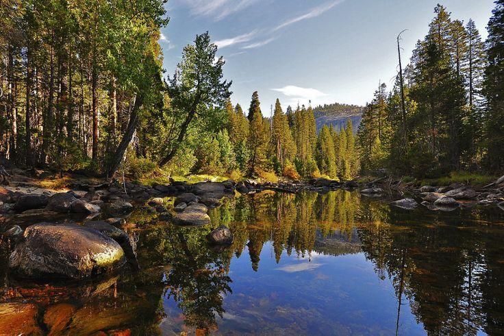 Parque Nacional de Yosemite: declarado por razones obvias Patrimonio de la Humanidad por la Unesco, este parque se extiende por las laderas orientales de la cadena montañosa de Sierra Nevada en Estados Unidos. Destaca mundialmente por sus acantilados de granito, sus saltos de agua y sus ríos cristalinos, así como por sus impresionantes bosques de secuoyas ginates.