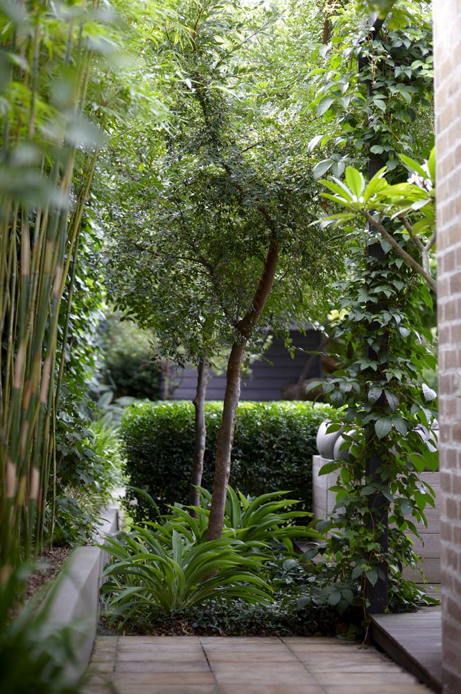 Planting for privacy resembles a courtyard and I love that.