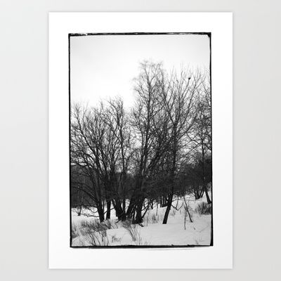 Norwegian forest VI Art Print by Plasmodi - $17.00