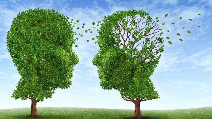 Nowa dieta MIND chroni przed chorobą Alzheimera - Stylnazdrowie.pl