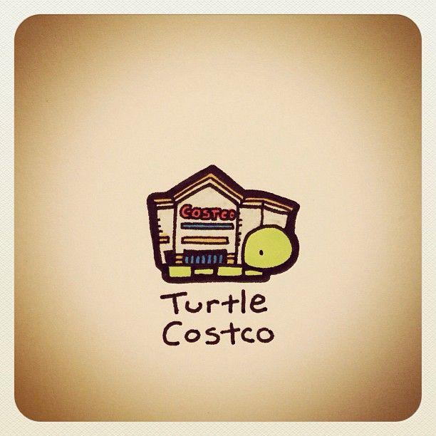 Turtle Costco - @turtlewayne- #webstagram