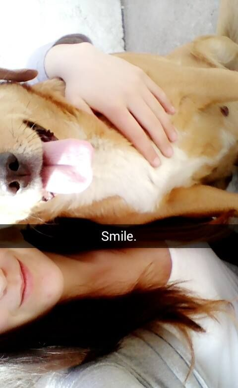 #dog #cute #smile