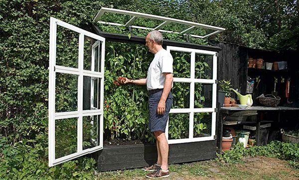 Har du bara lite utrymme över mot en sydvänd vägg, så har du plats för ett växthus. Bygg det nu – och se fram emot de solmogna tomaterna!
