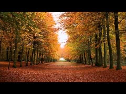Autumn Child, Heaton Chapel by Lúnasa