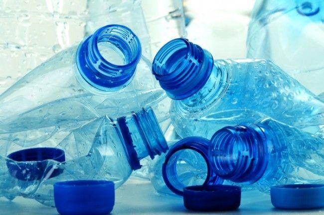 Is BPA harmful during Pregnancy?