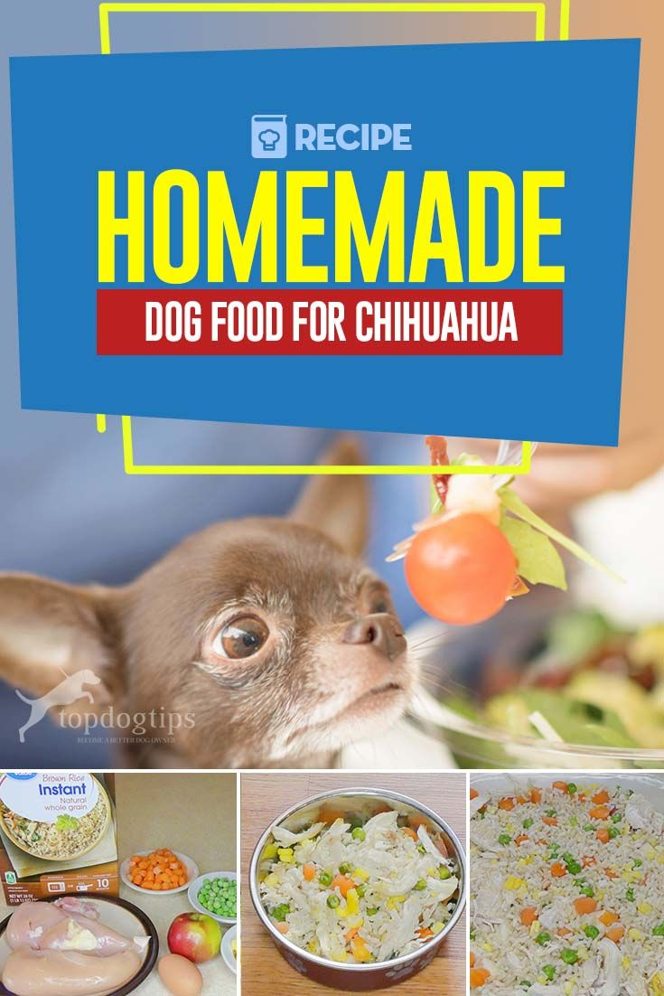 Recipe Homemade Dog Food For Chihuahua Dog Food Recipes