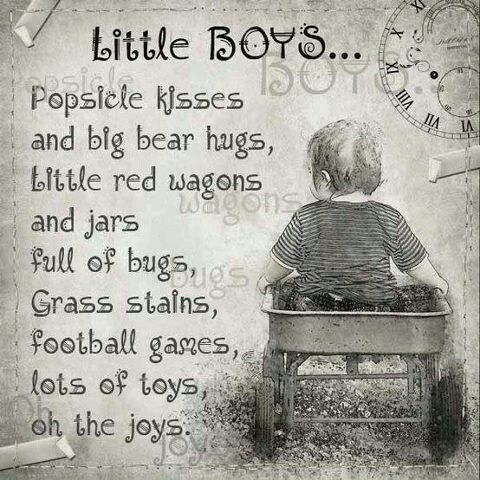 What little boys are made of
