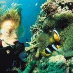 Scuba dive in Vanuatu and see the magnificent coral reefs