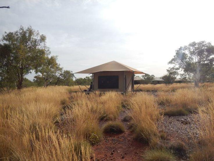 Eco tents in Karijini Eco Retreat, amazing and comfortable outback experience! #Karijini #Eco #Outback
